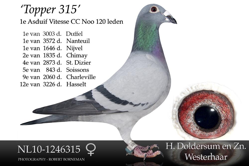 nl10-1246315