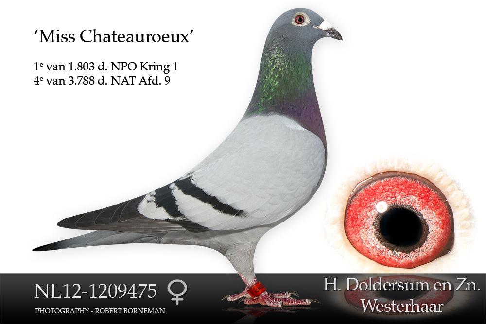 nl12-1209475